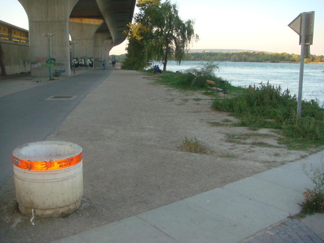 Donauufer bei Nussdorf